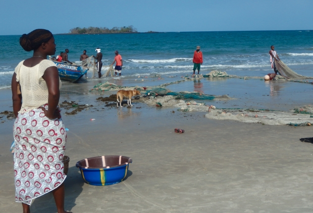 Women wait to sort the fish as the men bring in the catch