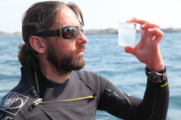 Shane checks the water. Looking for the Basking Shark's food source helps you find where the shark are most likely to be.