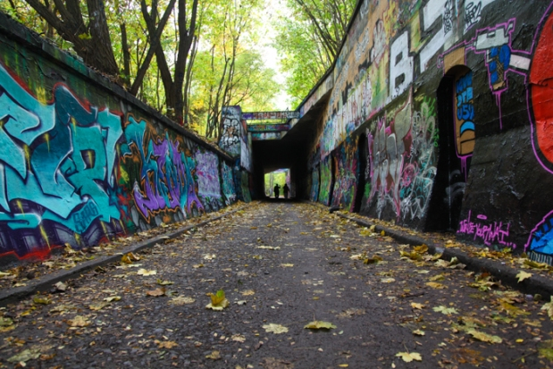 I took this image for the World AIMS Project, it shows the graffiti wall in the Natur-Park Schöneberger Südgelände, Berlin