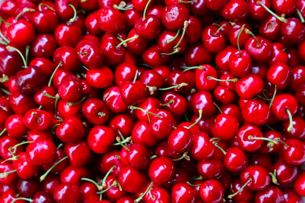 cherries (1 of 1)